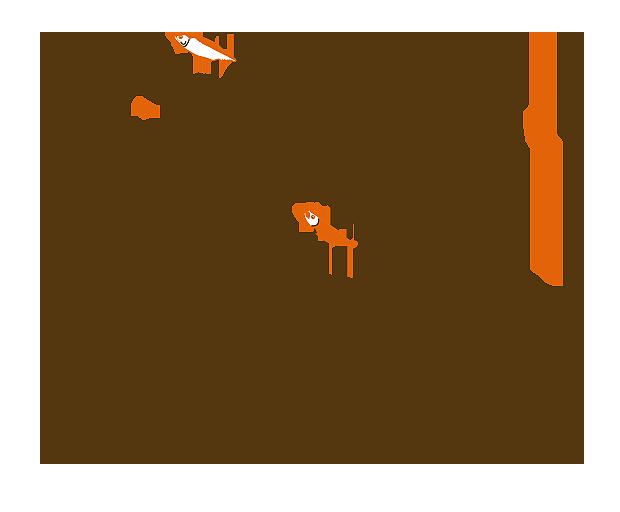 saba_sake06