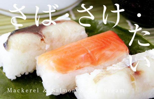 saba_sake_tai01