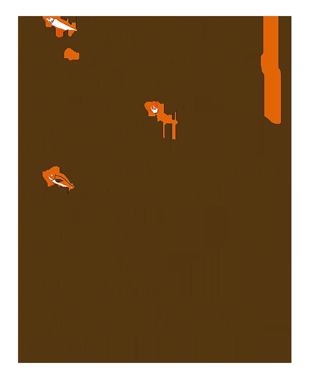 saba_sake_tai02