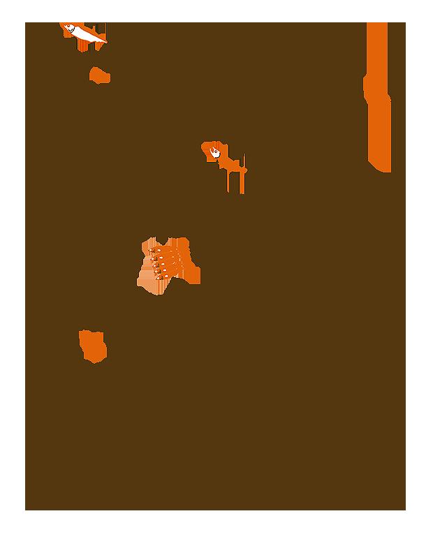 saba_sake_zyako03